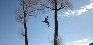 Обрезка  и удаление аварийных деревьев